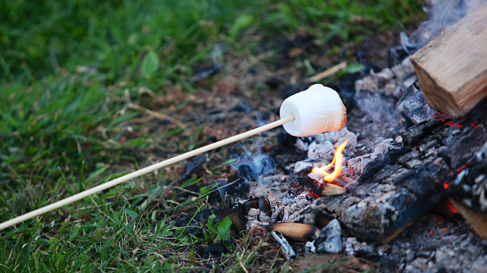 S'mores at the campfire, one of the joys of a summer farm wedding.