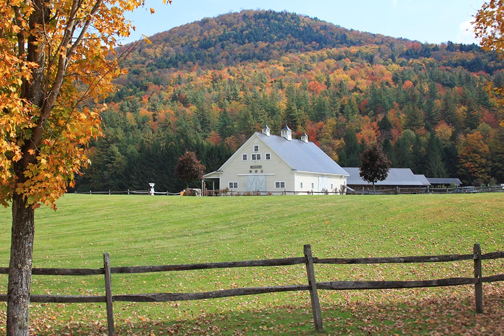 Fall color over the white and brown wedding barns at Riverside Farm