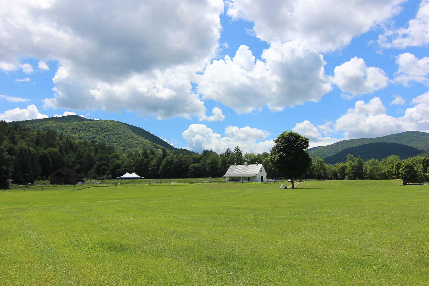 Riverside_Farm_Tented_Reception-5