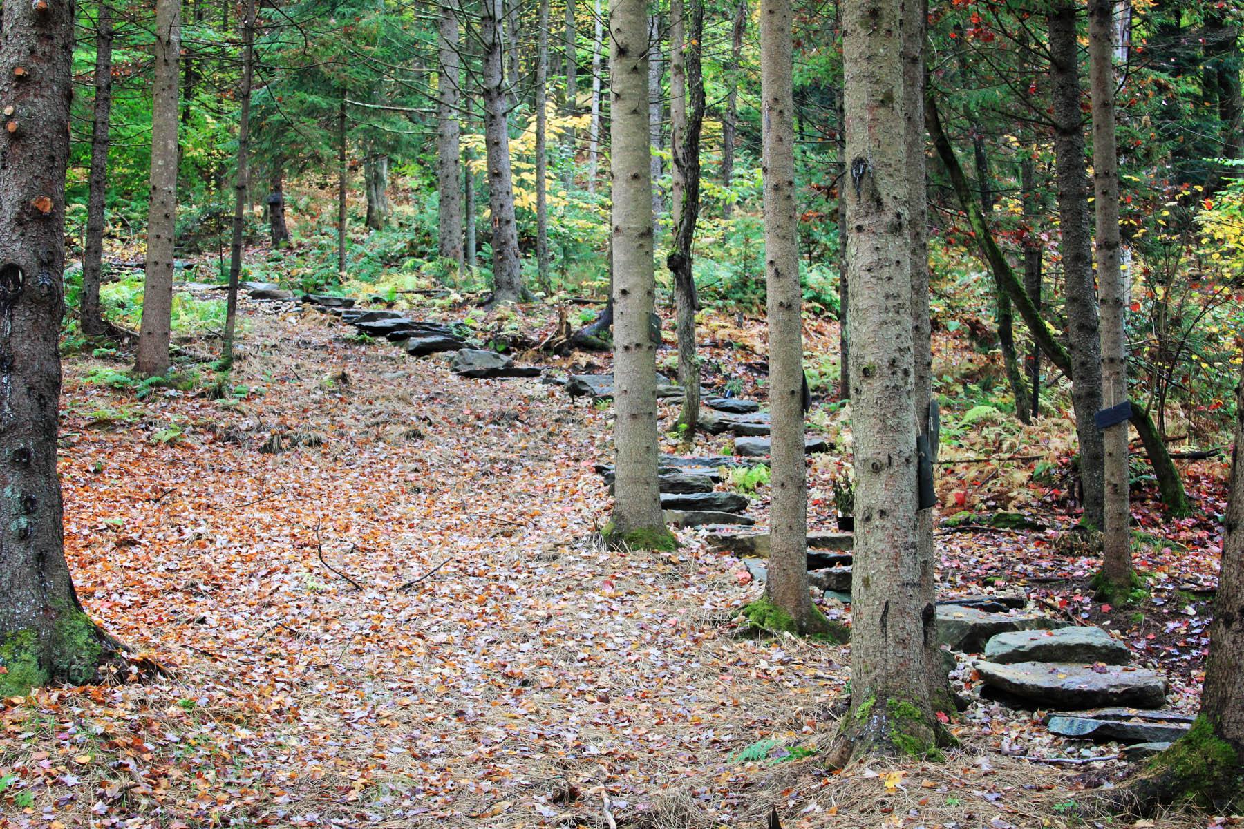 Riverside Farm Stone Steps