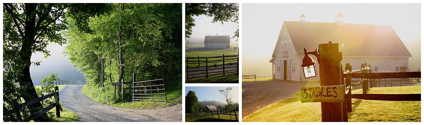 Summer Misty Mornings